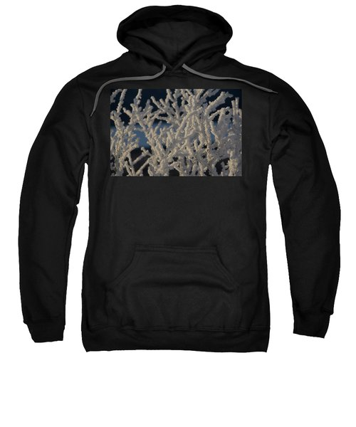 Snow Scean 4 Sweatshirt