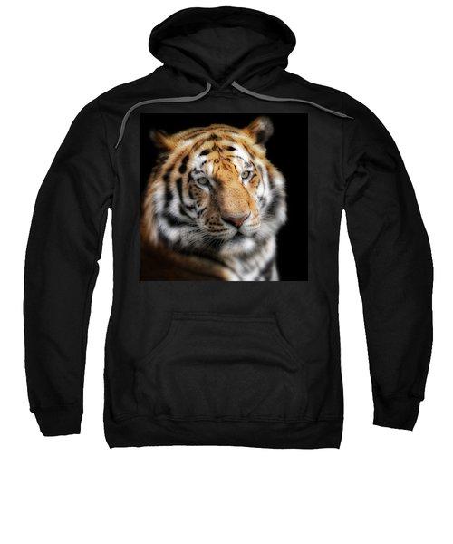 Soft Tiger Portrait Sweatshirt