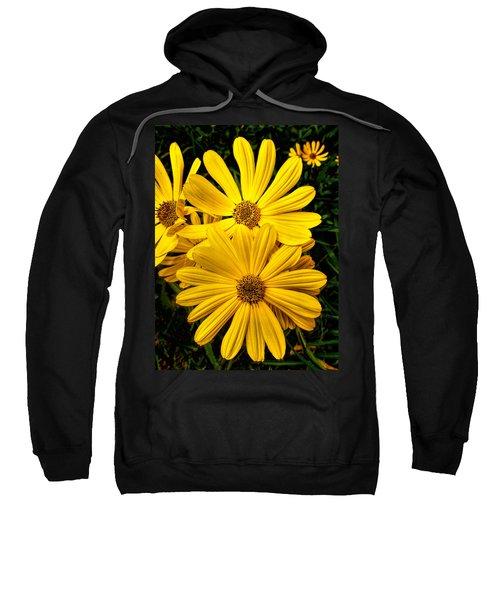 Spring Has Come To Georgia Sweatshirt