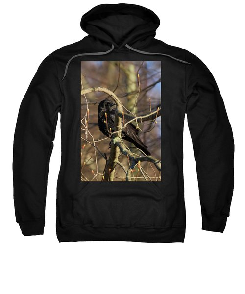 Sweatshirt featuring the photograph Springtime Crow by Bill Wakeley