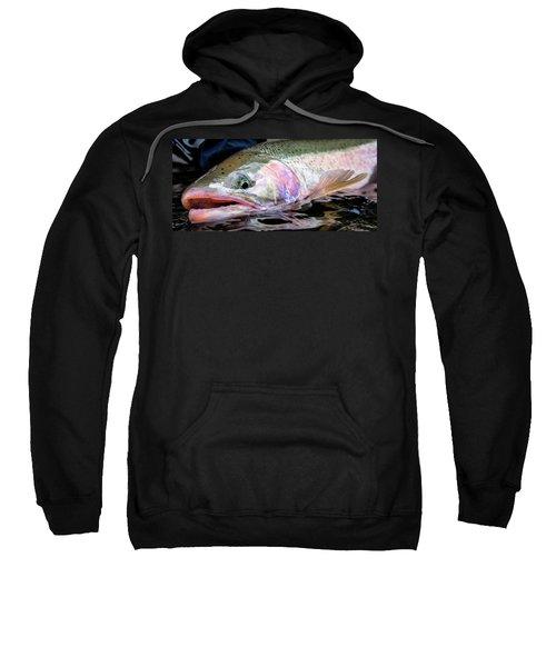 Steelhead 3 Sweatshirt