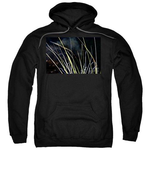 Stems Sweatshirt