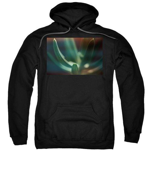Succulent Emerging Sweatshirt