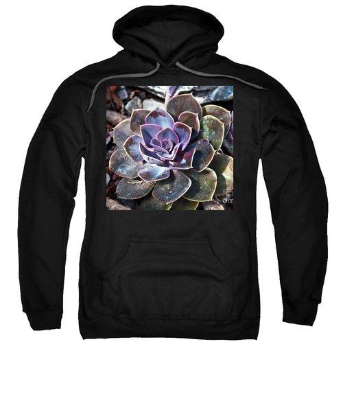 Succulent Plant Poetry Sweatshirt