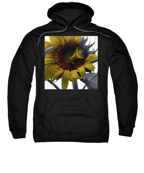 Sunflower Bee Sweatshirt