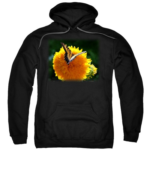 Swallowtail On Sunflower Sweatshirt by Korrine Holt