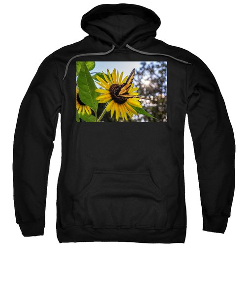 Sunflower Swallowtail Sweatshirt