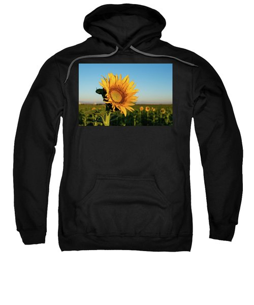 Sweatshirt featuring the photograph Sunflowers At Sunrise 2 by Stephen Holst