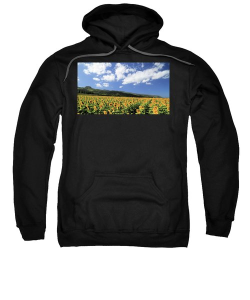 Sunflowers In Waialua Sweatshirt