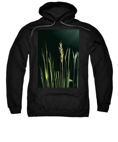 Sunlit Grasses Sweatshirt