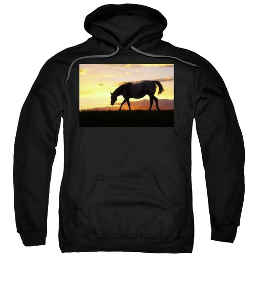 Sunset Appy Sweatshirt