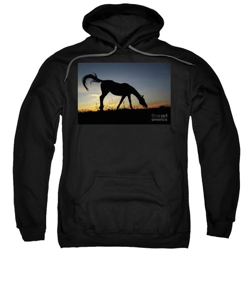 Sunset Horse Sweatshirt
