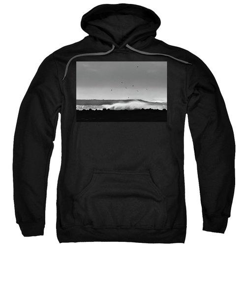 Surf Birds Sweatshirt