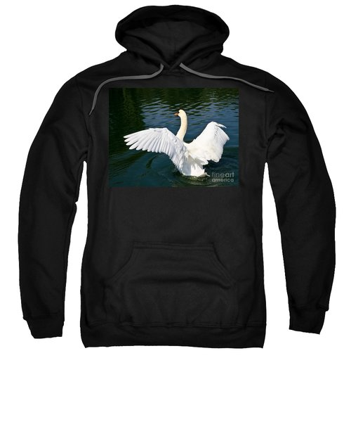 Swan Moment Sweatshirt