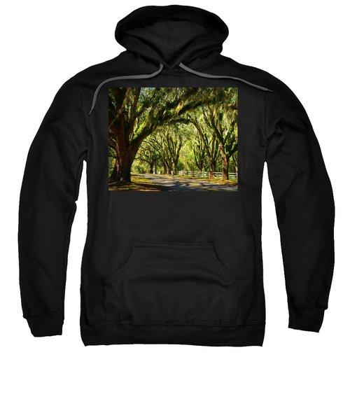 Tallahassee Canopy Road Sweatshirt