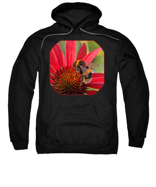 Taste Of Summer - Bee On Red Coneflower - Square Sweatshirt