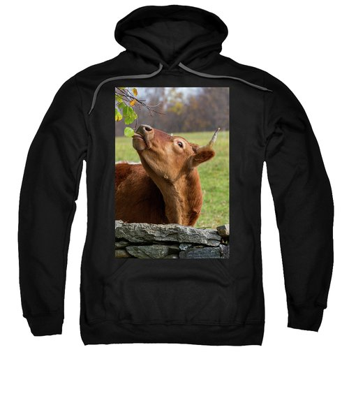 Sweatshirt featuring the photograph Tasty by Bill Wakeley