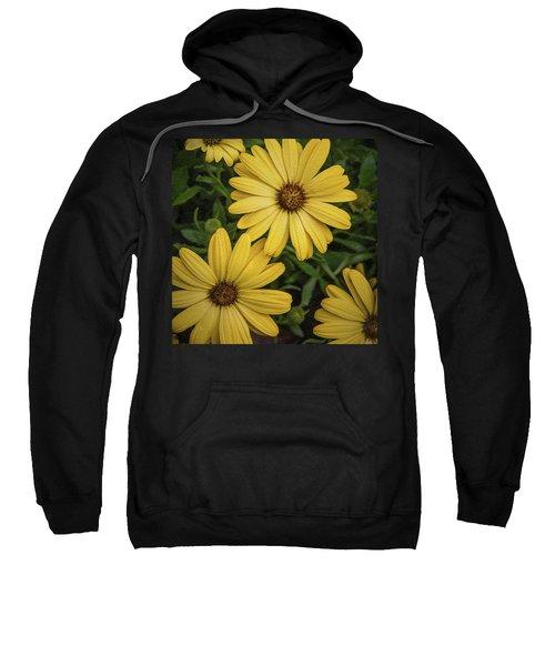 Textured Floral Sweatshirt
