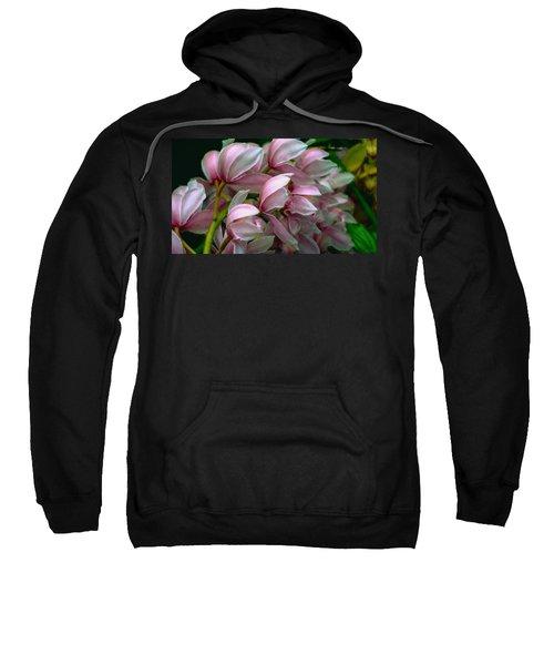 The Beauty Of Orchids Sweatshirt