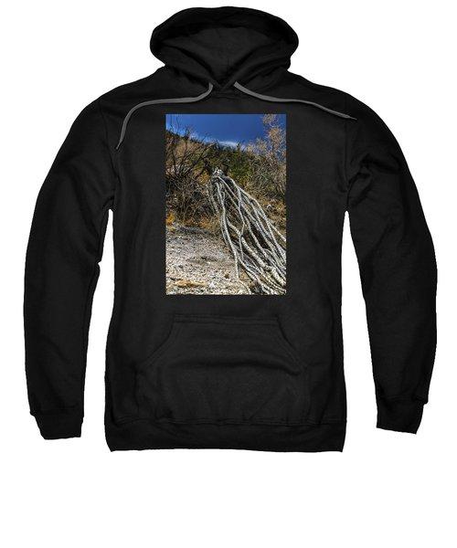 The Desert Sentinel Sweatshirt