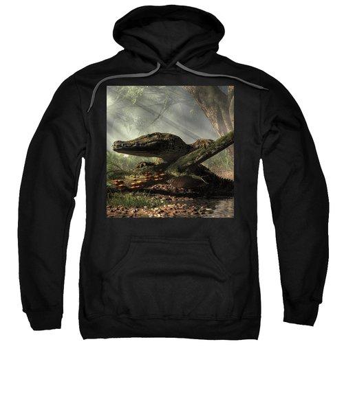 The Dragon Of Brno Sweatshirt