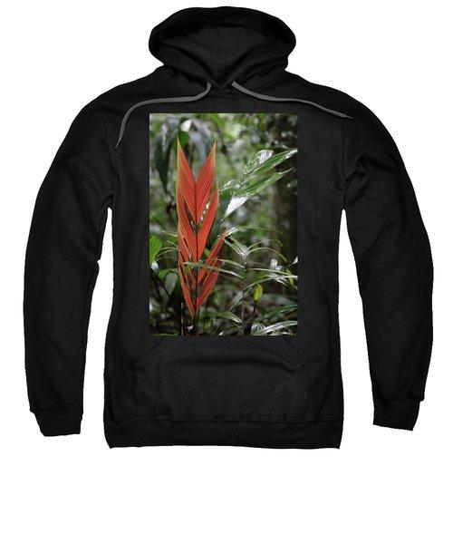 The Heart Of The Amazon Sweatshirt