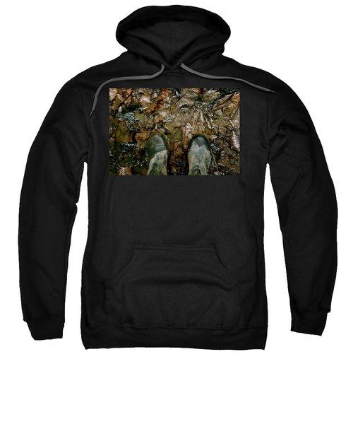 The Path Into The Amazon Sweatshirt
