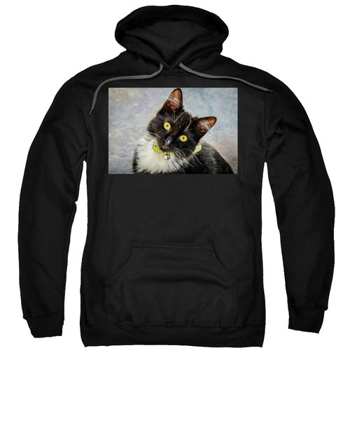 The Portrait Of A Cat Sweatshirt