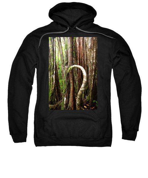 The Rainforest Sweatshirt