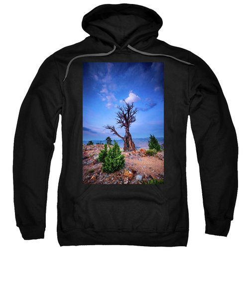The Sentinel Still Stands Sweatshirt