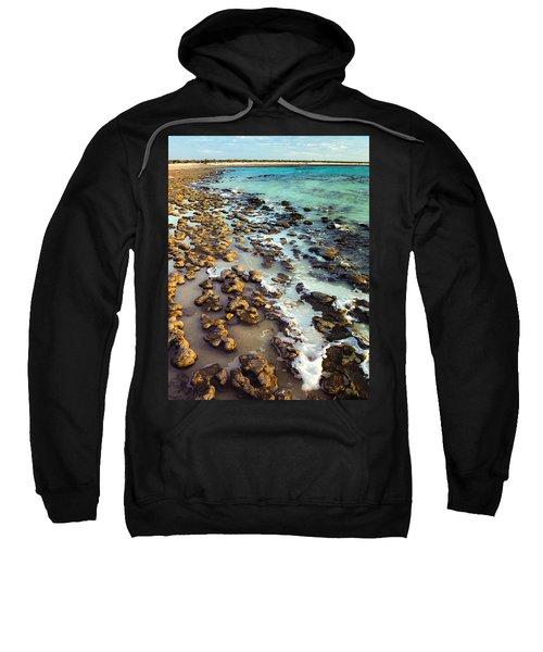 The Stromatolite Family Enjoying Its 1277500000000th Sunset Sweatshirt