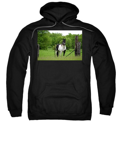 The Strong Horse Sweatshirt