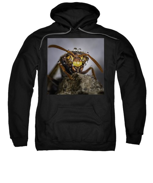 Sweatshirt featuring the photograph The Wasp by Chris Cousins