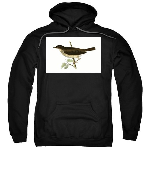Thrush Nightingale Sweatshirt by English School