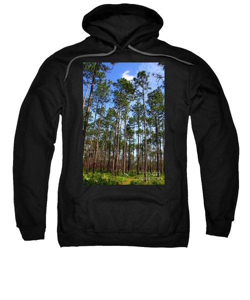 Trail Through The Pine Forest Sweatshirt