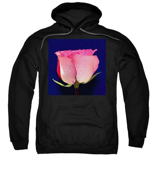 Translucent Rose Sweatshirt