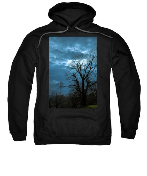 Tree # 23 Sweatshirt