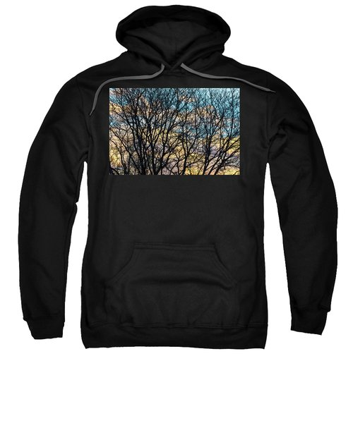 Tree Branches And Colorful Clouds Sweatshirt by James BO Insogna