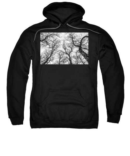 Tree Tops Sweatshirt