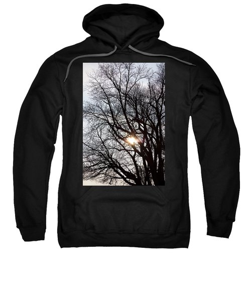 Sweatshirt featuring the photograph Tree With A Heart by James BO Insogna