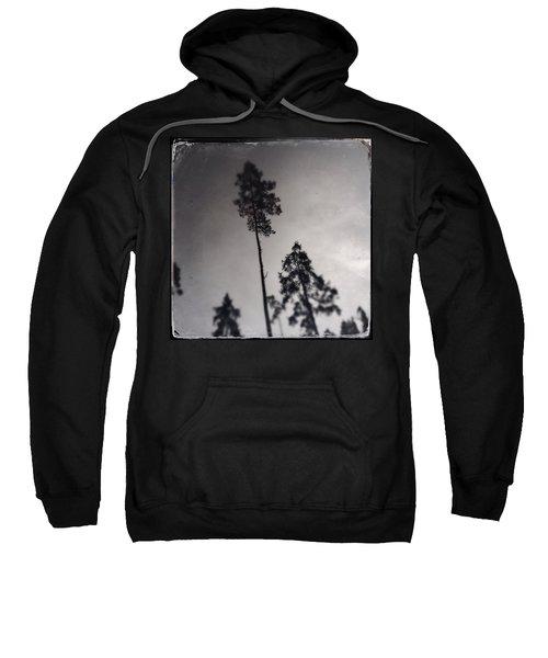 Trees Black And White Wetplate Sweatshirt