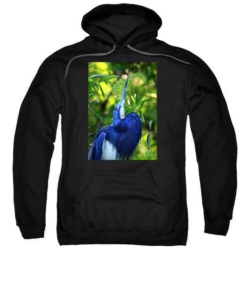 Tri-colored Heron Head Throw Sweatshirt