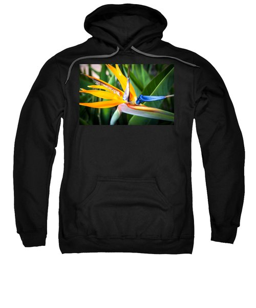 Tropical Closeup Sweatshirt