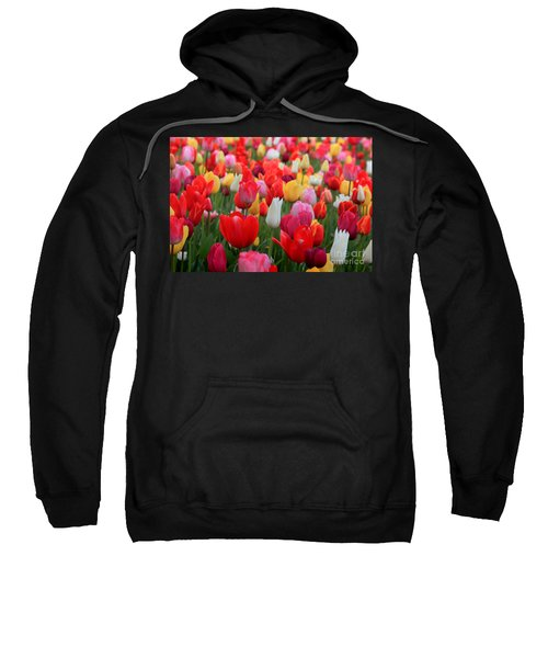 Sweatshirt featuring the photograph Tulip Color Mix by Peter Simmons