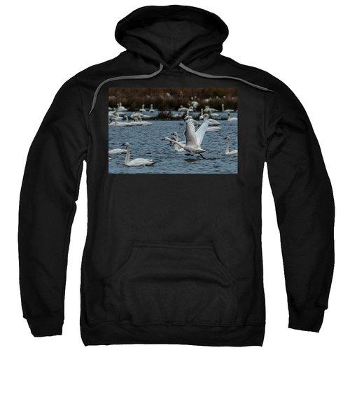 Tundra Swan And Liftoff Head Start Sweatshirt