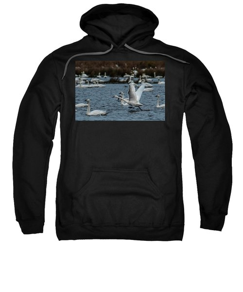 Tundra Swan And Liftoff Head Start Sweatshirt