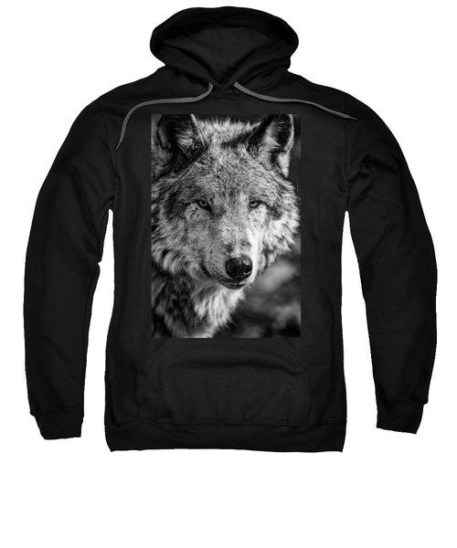 Tundra Wolf Sweatshirt