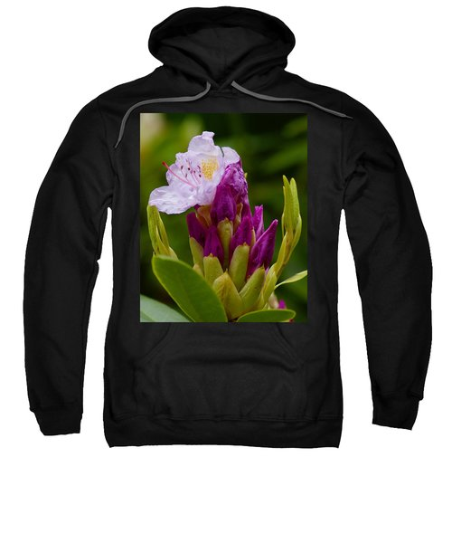 Unveiling Of Inner Self Sweatshirt