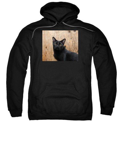 Velvet 2 Sweatshirt