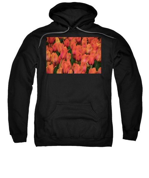 Vibrant Whispers Sweatshirt